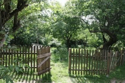 Garten Sommerhäuser-4941dd17
